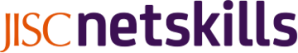 Netskills logo
